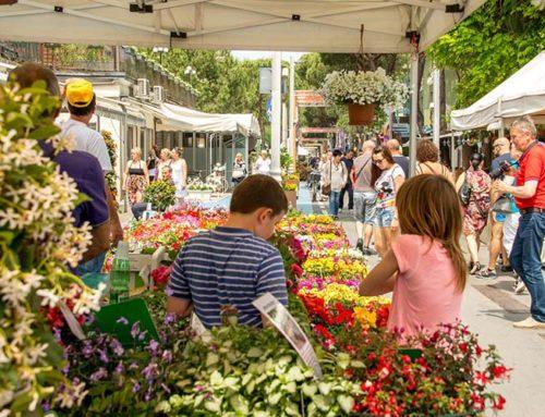 I mercati e mercatini di Riccione: frutta, verdura, abbigliamento e pulci
