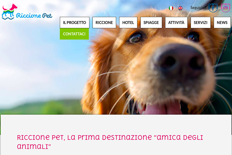 Riccione Pet Friendly Riviera Amato Cane